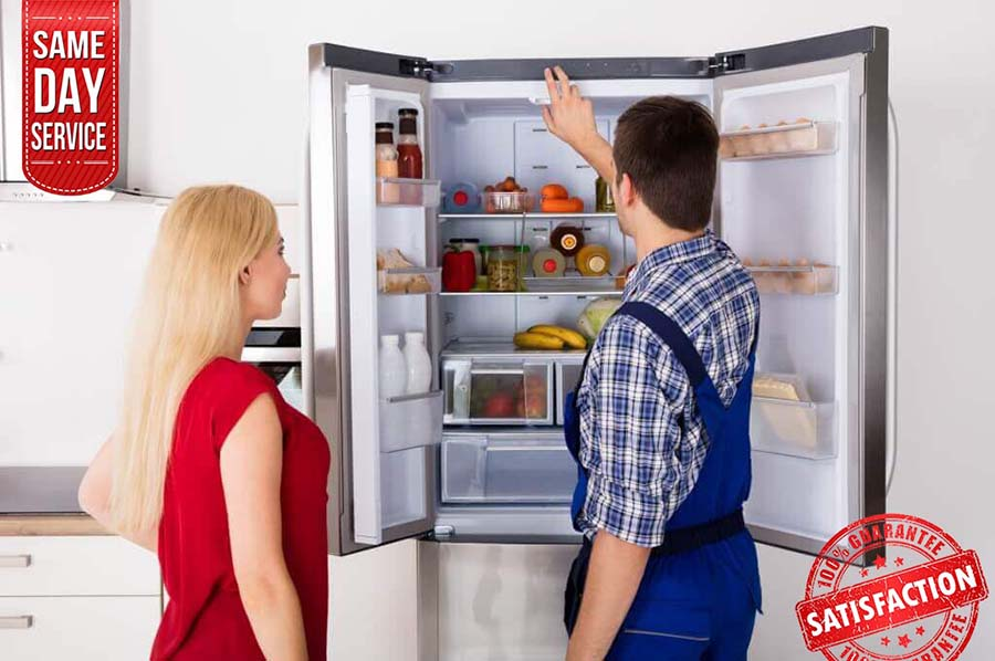 professional fridge repair